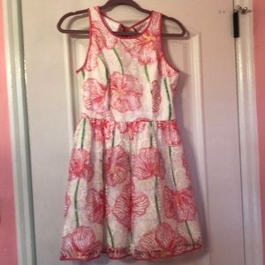 Lilly Pulitzer Dresses - Lilly Pulitzer dress never worn